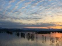 河南丹江湿地第二届生态保护摄影大赛;碧水清波