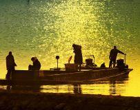 宿鸭湖上捕鱼人