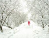 《雪中行》