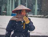 《在雪中》