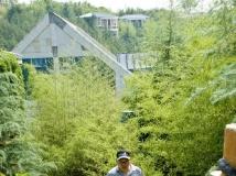 玉京杯摄影赛应征稿件(三)·  玉京温泉印象(组照)