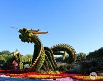 北京北海风光(2)