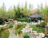 南阳世界月季大观园之风光(22)——郑州园