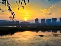 晩霞染湿地