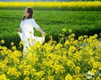 春意浓依赏花季