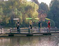 小桥花折伞
