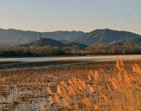 冬日玉泉山