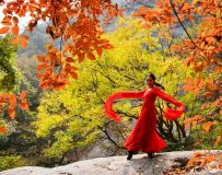 红衣舞娘2