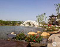 南阳月季园西园风景2
