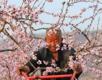 鲜花献给辛劳人