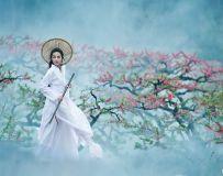 龙老五【视觉】江湖剑客