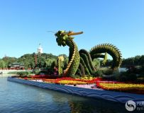 北京北海风光(3)