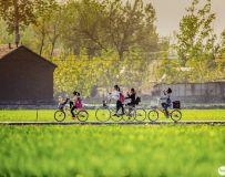 光影中国网2019年第4期月赛主题:春天的故事