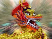新春佳节系列活动之一,庆新春舞大龙。