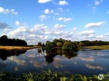 2014年第九期月赛:水色天光共蔚蓝——拍摄于伦敦里士满公园