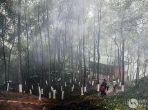 雾雨问佛道
