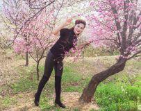 草木翘首暖阳春