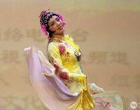 舞蹈-百花争妍31