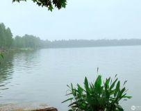 武汉东湖1