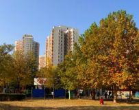北京体育公园初冬随拍之二十三