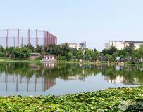 龙潭西湖风光(11)
