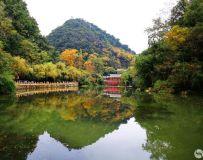 黔灵山即景 3
