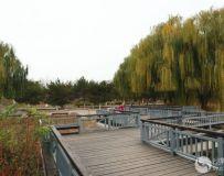 北京大运河森林公园(47)