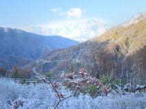 宝天曼的冬季