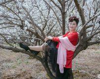 家乡的樱桃树