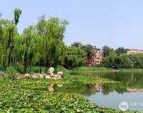 龙潭西湖风光(10)