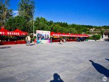十一黄金周桐柏县政府在桐柏红色纪念馆举办桐柏县观赏石 根雕 根艺展