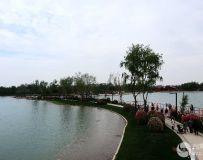 南阳世界月季大观园采撷(34)——东湖