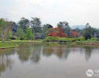 中国西双版纳热带植物园