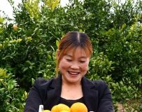 桔园采鲜果(11)