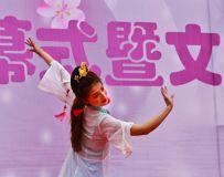 桃花节开幕式16