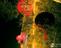 《火红的灯笼红火的年》