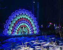 2019方城牡丹园灯展(手机拍摄9)