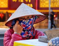 卖风梨的越南女人