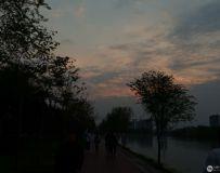 南阳月季公园
