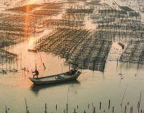海上养殖场