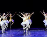 舞蹈-九色鹿