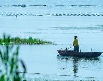 杨楼河上一叶舟