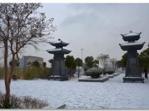 踏雪寻梅(三)