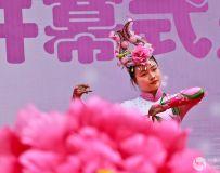 桃花节开幕式22
