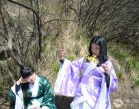 春暖花开,踏青游园