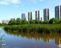城市建设绿色环保