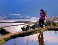 《走在乡间小路上》
