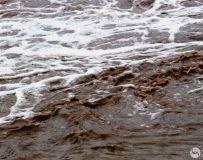 山西 黄河壶口瀑布  采风