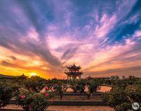 南阳中国月季园(组照)