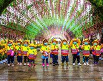 小游客观菊展